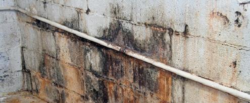 Waterlekkage op de muur