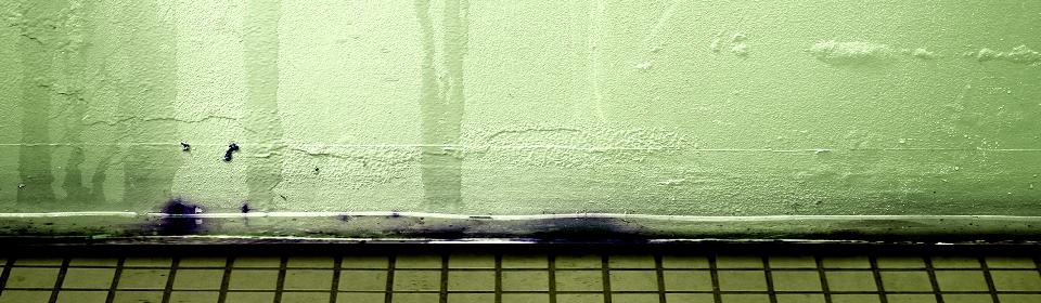 vocht in de muur door lekkage